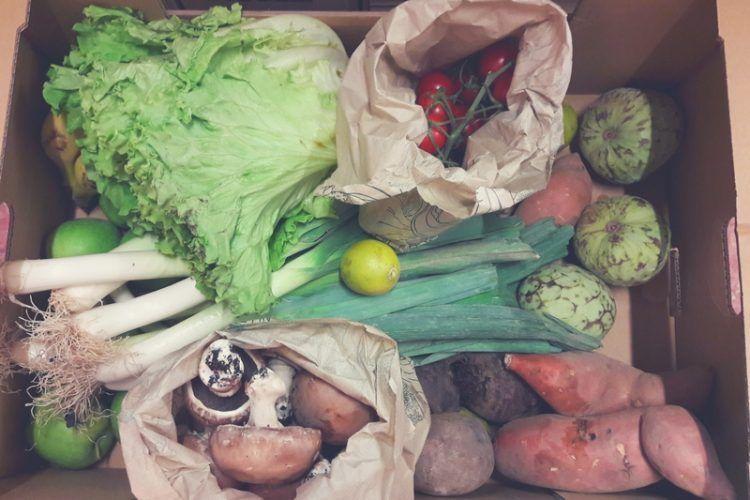 cesta fruta y verdura ecológica guadalajara