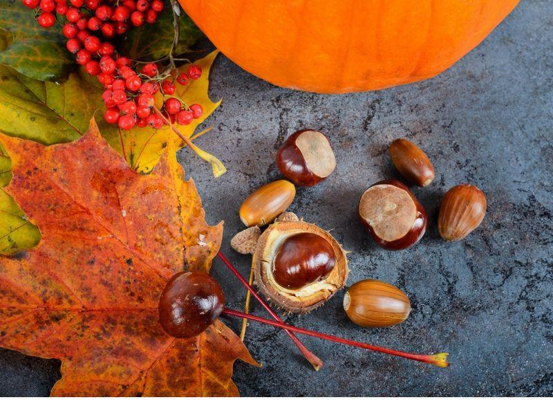 Dieta depurativa de otoño
